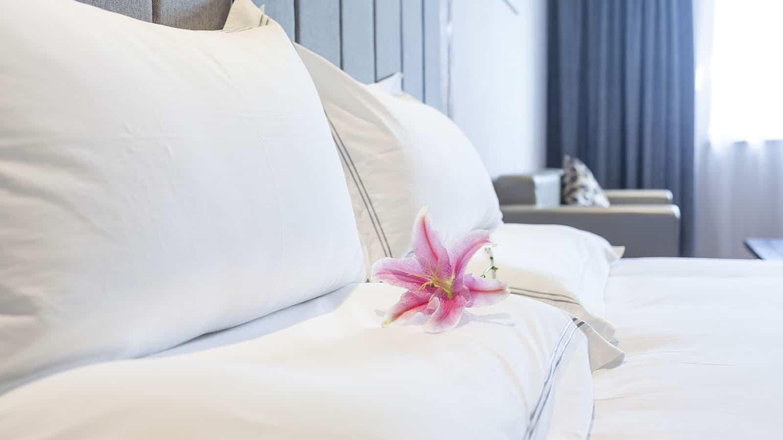 Hotels-notredamedemonts-vendee