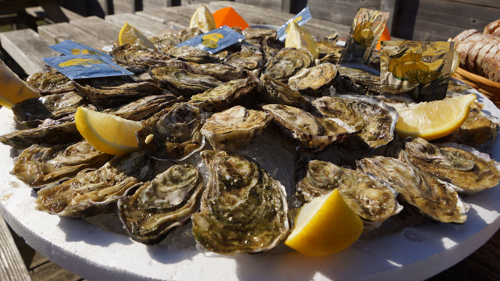 oysters-eating-degustation-in-vendee
