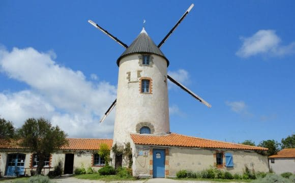 sightseeing-vendee-windmills