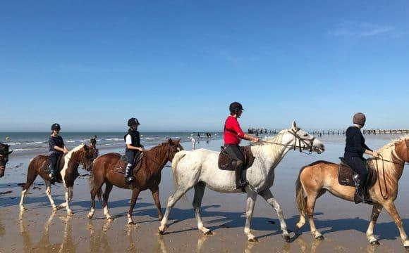 Equestrian centres-saintjeandemonts-vendee