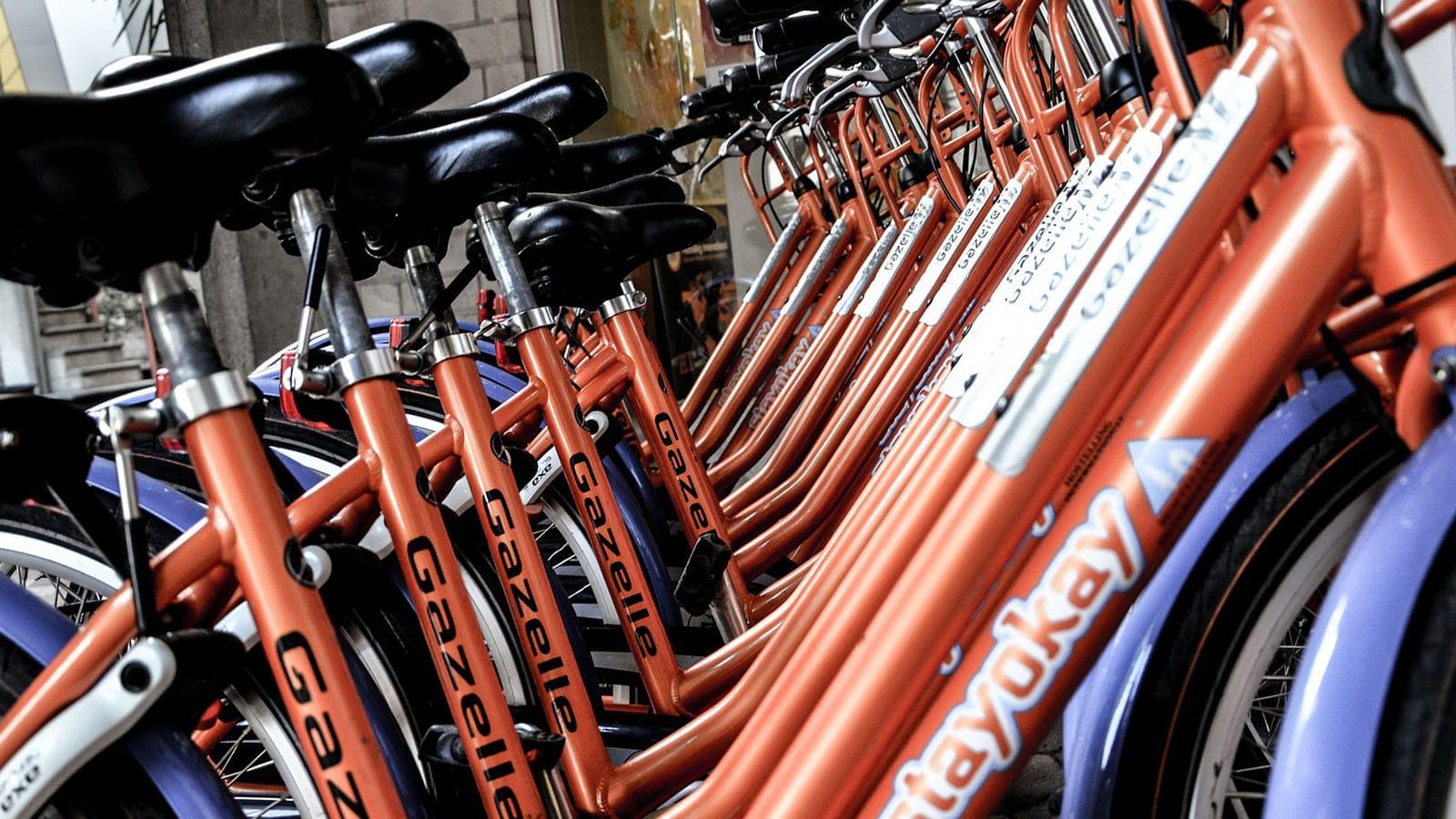 bike-hire-vendee-pays-de-saint-jean-de-monts
